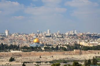 lotoholik israel